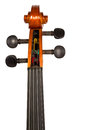 Violin head stock and tuning pegs Royalty Free Stock Photo