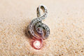 Violin key treble clef in sand Stock Images