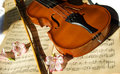 Violin on music sheet Royalty Free Stock Photo