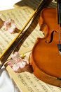 Violin on music sheet Royalty Free Stock Images
