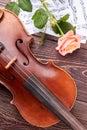 Violin, musical notes and pink rose. Royalty Free Stock Photo