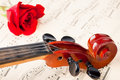 Violin on notes Royalty Free Stock Photo