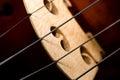 Violin part on black wooden background macro Stock Image