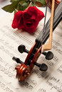 Violin and rose Royalty Free Stock Image