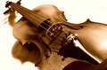 Violin in sepia. Royalty Free Stock Photo