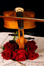 Violin sheet music and rose closeup still life on black background Royalty Free Stock Image