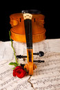 Violin sheet music and rose closeup wood soft light Royalty Free Stock Photography