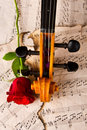 Violin sheet music and rose closeup wood soft light Royalty Free Stock Images