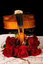 Violin sheet music and rose closeup wood soft light Stock Image