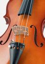 Violin under the white background Stock Image
