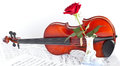 Violin viola with red roses on notes sheet Stock Image