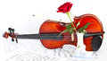 Violin viola with red roses on notes sheet Royalty Free Stock Images