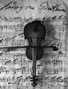 Violine black and white Royalty Free Stock Photo