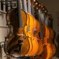 Violins hanging on display Royalty Free Stock Photo