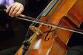 Violoncello musician. Royalty Free Stock Photo