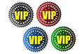 Vip badges four vector in the colors black red blue and green Stock Photos