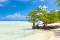 Virgin beach in Cuba Royalty Free Stock Photo
