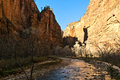 The virgin river and the riverside walk zion national park utah Stock Photos