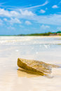 Virgin tropical beach at coco key cayo coco in cuba with a rock the foreground Royalty Free Stock Photography