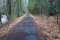 Virginia Creeper Trail Royalty Free Stock Photo