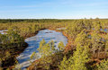 Viru bog frozen pools in lahemaa national park estonia Stock Image