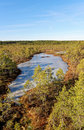 Viru bog frozen pools in lahemaa national park estonia Stock Images