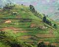 Virunga Mountains in Africa Stock Photo