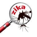 Virus zika caution of infection Royalty Free Stock Photography