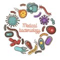 Viruses and bacteria poster for medical bacteriology science and healthcare or biology flat vector design