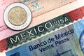 The visa of Mexico in the Russian international passport and Mexican pesos Royalty Free Stock Photo