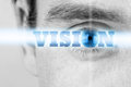 Vision Royalty Free Stock Photo