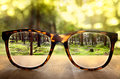 Vision glasses show sharp picture of the background Royalty Free Stock Images
