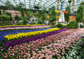 Visitors to the gardens by the bay in singapore admire the beautiful tulip display is a nature park spanning Stock Photos