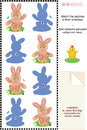 Visual puzzle picture riddle match pictures cute bunnies to their shadows answer included Stock Image