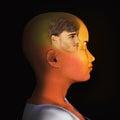 Visualisation d illustration of a meditating woman Royalty Free Stock Image