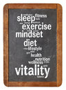 Vitality word cloud on blackboard of words or tags related to or vital energy concept a vintage slate isolated white Stock Photos