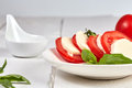 Vitamin snack with tomatos and mozzarella caprese Royalty Free Stock Photo