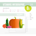 Vitamine infographic healthy lifestyle b in fruits and vegetables vegeterian and diet vector concept Royalty Free Stock Photography