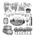 Viticulture big set. Royalty Free Stock Photo