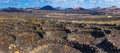 Viticulture winery lanzarote la geria vineyard on black volcanic soil in canary islands panorama Stock Photography