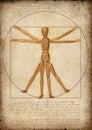 толкование человека самомоднейшее vitruvian Стоковые Изображения RF
