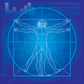 The Vitruvian man (Blueprint version) Stock Photography