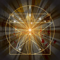 The Vitruvian Man Inscribed In The Pentagram Royalty Free Stock Image