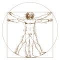 Vitruvian Man by Leonardo Da Vinci Royalty Free Stock Photo
