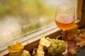 Vitt vin för höst Arkivfoton
