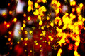 Vivid color of painterly glow of flower in the garden Royalty Free Stock Images