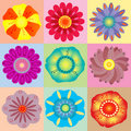 Vivid colorful floral background Royalty Free Stock Photo