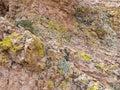 Desert rock colors, Mount Nutt Wilderness Royalty Free Stock Photo