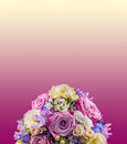 Vivid floral arrangement with mauve roses and Hydrangea Hortensis, wedding bouquet, isolated, mauve to yellow degradee background. Royalty Free Stock Photo