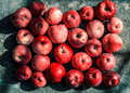 Vivid freshly picked red apples with contrasting shadows on the metal table old Stock Image